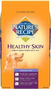 natures recipe vegetarian dry dog food healthy skin  lb