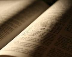 300 biblia
