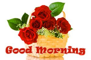 Saturday Good Morning Images Pics Download For Whatsaap