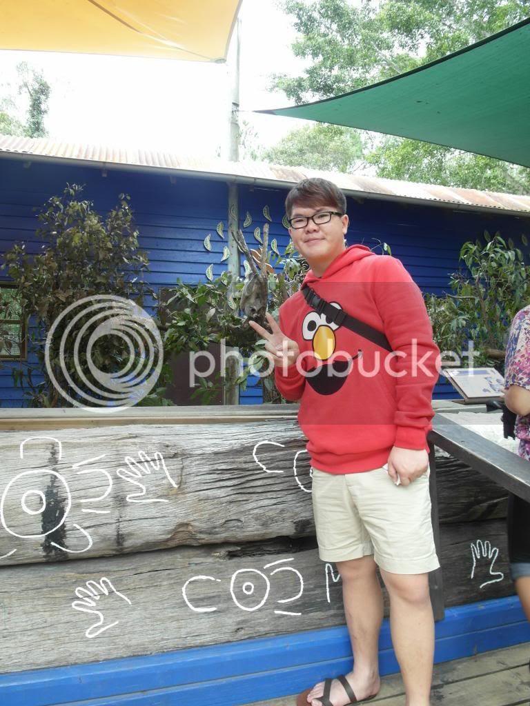 photo SAM_5922_zps01413223.jpg