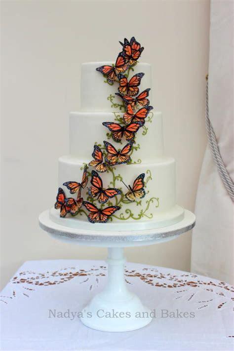 Adventurer's cake   migrating monarch butterflies   Cake