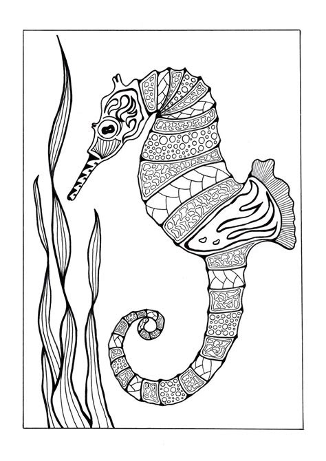 Sea Horse Coloring Pages