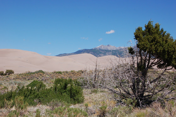5dunes,-mountain,-sagebrush!-copy.jpg
