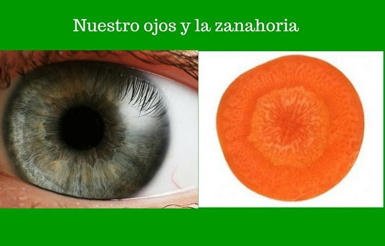 nuestro iris y la zanahoria