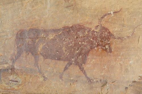 Selva Pascuala 2