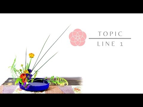Line 1 - Video Tutorial