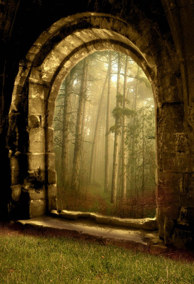 A forest portal to another dimension of Earth?