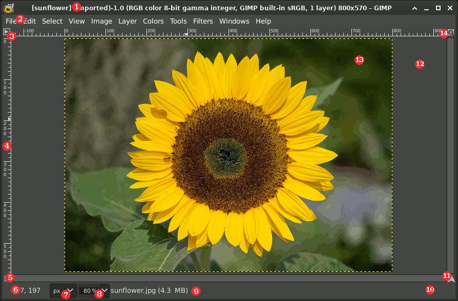The Image Window in Multi-Window Mode
