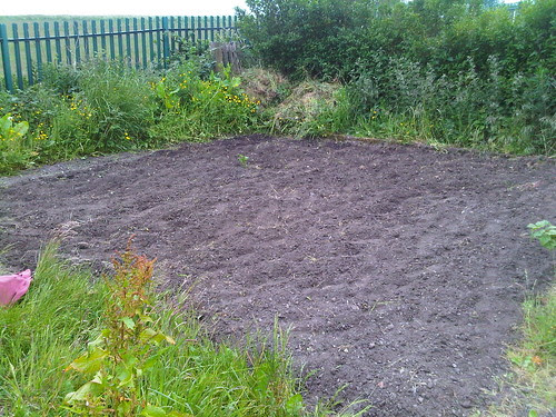 Marley Hill allotment bed one June 2011