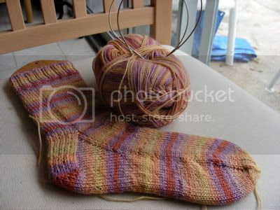 J Regia Africa socks