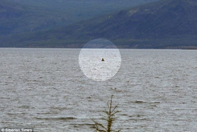 Could this be Nesski? This picture is said to show the mystery beast of the lake popping its head above water