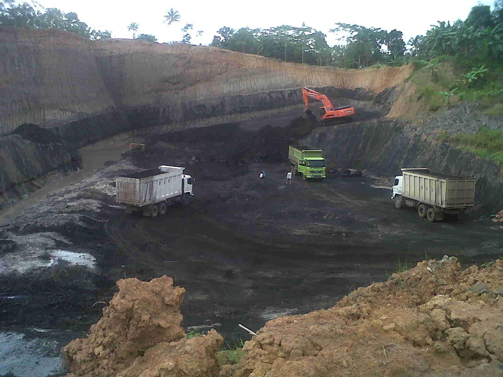 southborneocoal coal mining tongkang batu bara