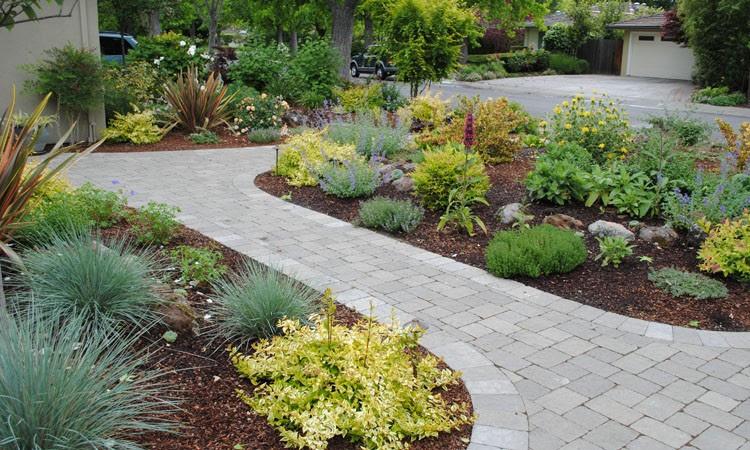 Low Water High Color Garden | Harmony in the Garden