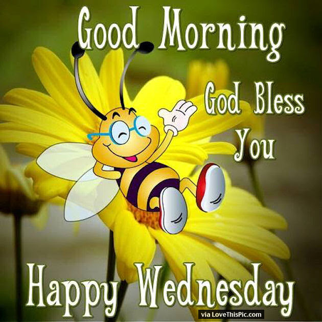 Good Morning God Bless Happy Wednesday Quote Pictures Photos And