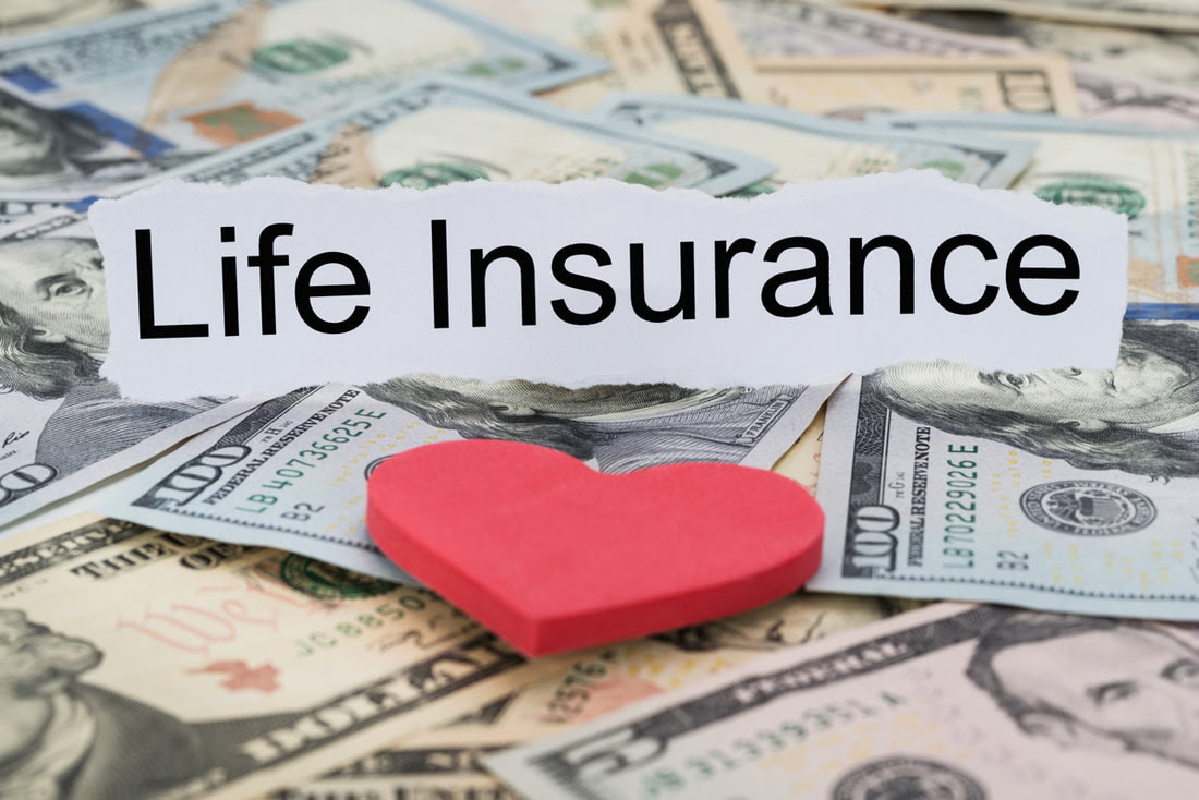 What Are The Two Major Types Of Life Insurance?