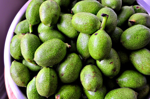 Green Walnuts Closeup