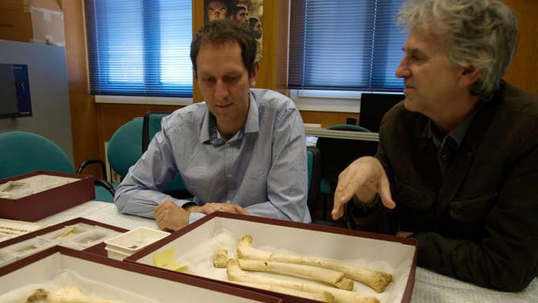 Los pobladores de Atapuerca tenían antepasados euroasiáticos