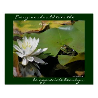 Frog Water Lily Inspirational Nature Poster Print print