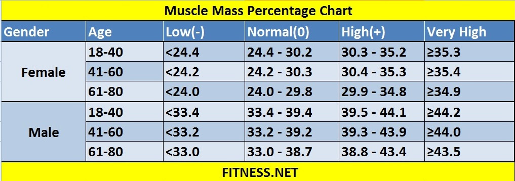 body fat percentage men's physique