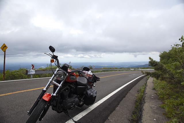 Harley Davidson XL 883R 056