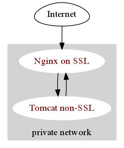 nginx tomcat reverse proxy schema