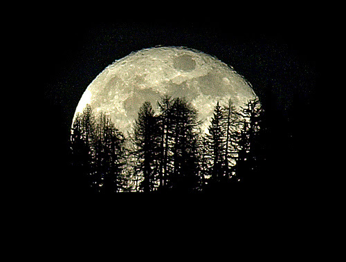 How To Take Stunning Pictures Of The (Super) Moon ...
