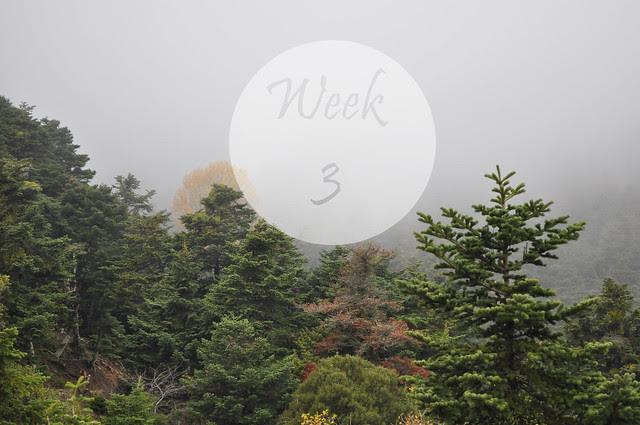 Happyweek3 (4)