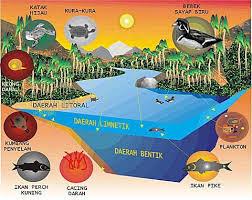 Definisi Dan Ruang Lingkup Ekologi Hewan