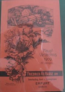 Haage Katalog