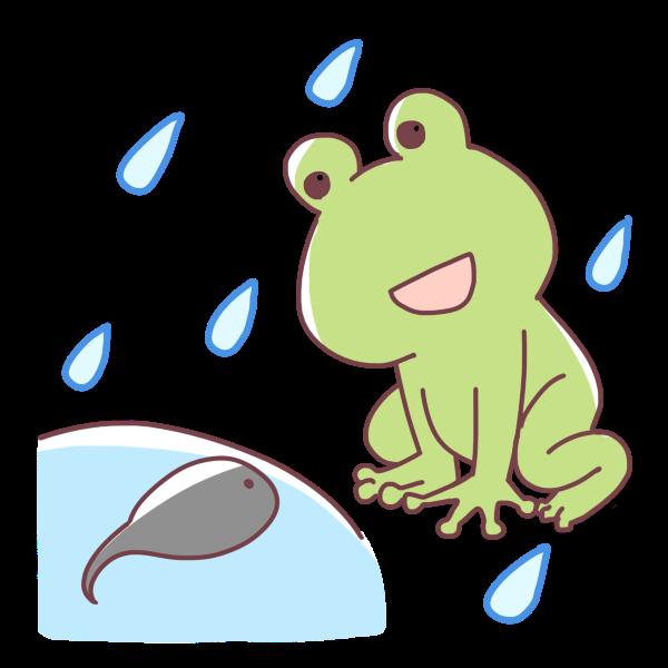 カエルとおたまじゃくしのイラスト かわいいフリー素材が無料の