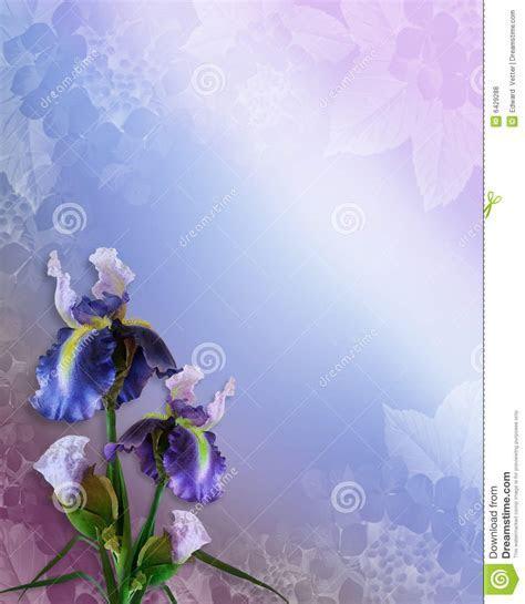 Irises Invitation Floral Border Stock Illustration   Image