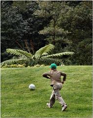... ó bola, não fujas, chega-te cá!!!