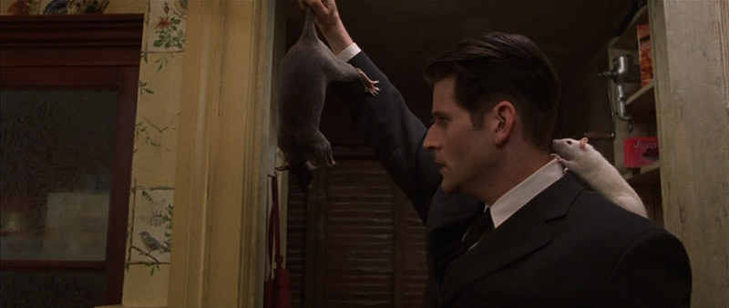 Rio Rancho Film Reviews: Willard (2003)