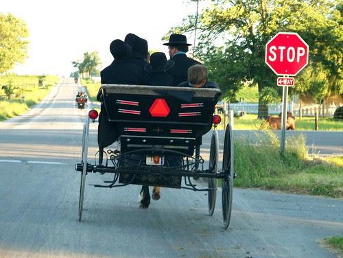 100_4754-Amish Buggy