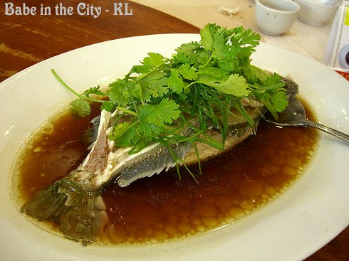 Steamed Australian Jack Pearl Fish in Superior Soy Sauce