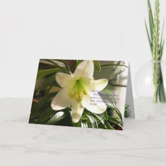 Easter Lily Card zazzle_card
