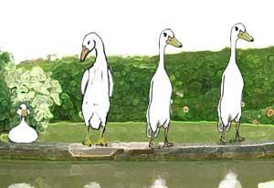 The zero duck