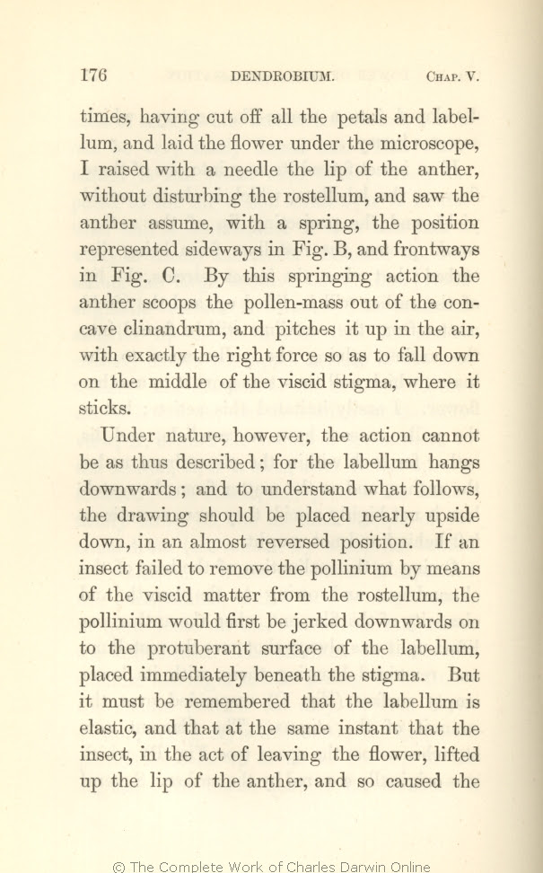 Darwin C R 1862 On The Various Contrivances By Which