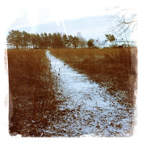 Winter :: vinter