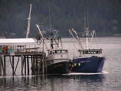 Unloading at Alaska Glacier Seafoods