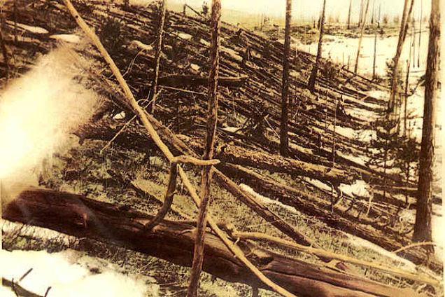 Fotografía sobre los campos de Tunguska, después del evento meteorítico.