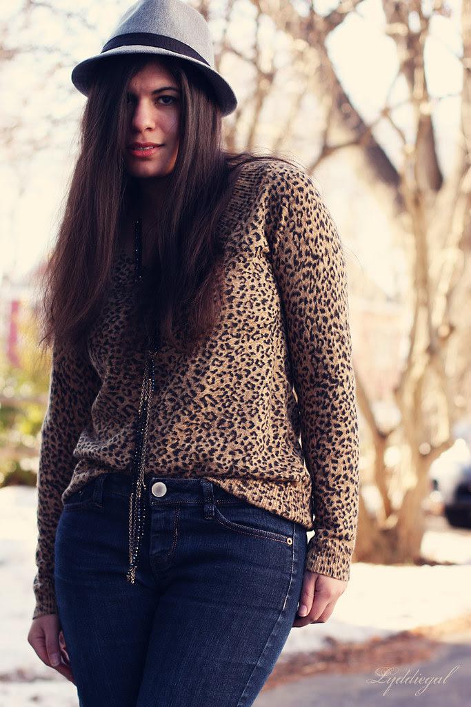 leopard punk