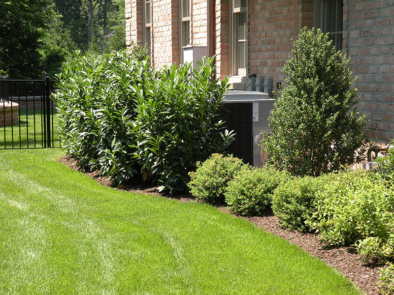 Backyard Landscaping Simple Landscaping Ideas