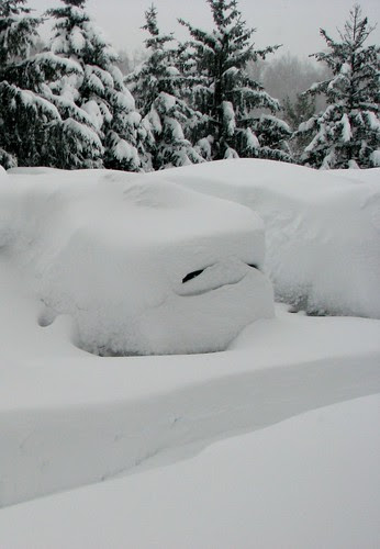 blizzard of 2010 15