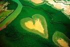 image-Coeur-de-Voh-formation-végétale-naturelle-forme-de-coeur-nouvelle-caledonie-vue-avion
