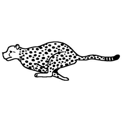 チーター2動物無料白黒イラスト素材