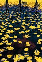 M. C. Escher Lake