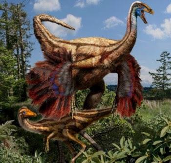 Reconstituição do Ornithomimus edmontonicus em adulto e juvenil (em cima); e o esqueleto de um adulto