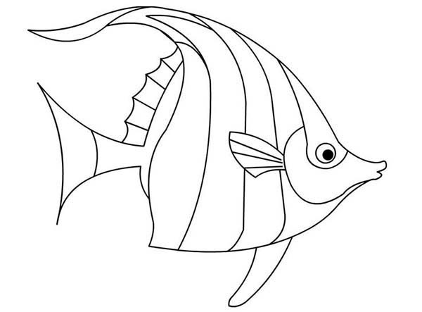 Beautiful Angel Fish Coloring Page | Coloring Sky