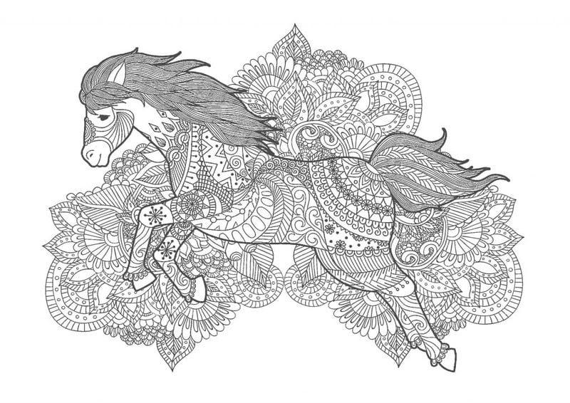 Ausmalbilder für erwachsene: Pferde zum ausdrucken ...